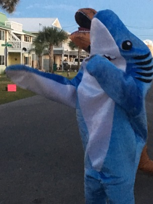 Shark! Almost Dabbing...